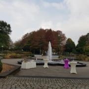 Sektempfang am Schloss Martfeld in Schwelm